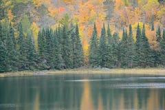 Перспектива осени на озере Жозефина - парке штата Itasca стоковая фотография