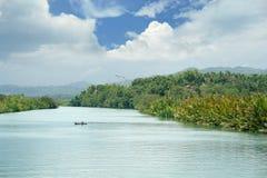 перспектива потока тропическая широкая Стоковые Изображения RF