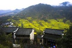Перспектива поля рапса Цзянси Wuyuan золотого стоковая фотография