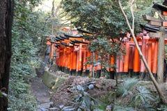 Перспектива пути торусов в Fushimi Inari Стоковое Изображение RF
