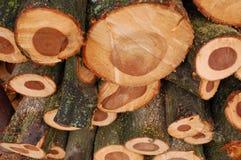 перспектива соединяет древесину стоковая фотография rf
