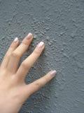 перста вручают manicured Стоковые Изображения RF