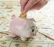 Вручите устанавливать золотую монетку в piggy банк Стоковое фото RF