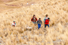 Перуанские дети бежать, Перу Стоковые Фотографии RF