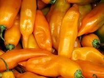 Перуанский желтый перец chili Стоковые Изображения RF