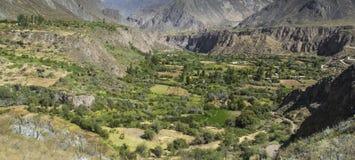 Перу, каньон Cotahuasi Каньон wolds самый глубокий Стоковые Фотографии RF