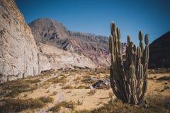 Перу, каньон Cotahuasi Каньон wolds самый глубокий Стоковые Изображения