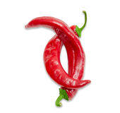 2 перца красных chili на светлой предпосылке Стоковая Фотография RF
