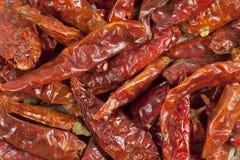 перцы высушенные chili Стоковая Фотография