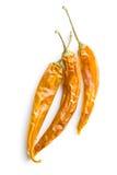 перцы высушенные chili Стоковое Изображение RF