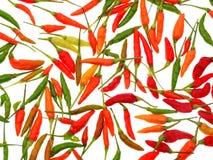 Перцы горячего chili изолированные на белой предпосылке Стоковые Изображения RF