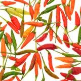 Перцы горячего chili изолированные на белой предпосылке Стоковая Фотография
