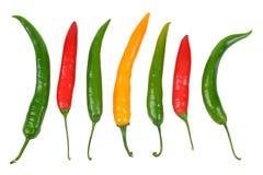 Перцы горячих чилей Стоковая Фотография