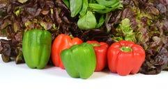 Перцы и салат Стоковые Изображения RF