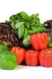 Перцы и салат Стоковое фото RF