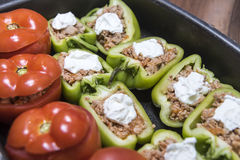 Перцы и томаты заполненные с мясом стоковое изображение