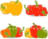 Перцы, комплект желтых, красных, зеленых и оранжевых перцев и листьев петрушки Стоковое фото RF