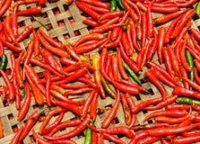 Перцы красного Chili на корзине стоковое изображение rf