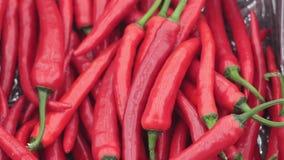 Перцы красного Chili на рынке сток-видео