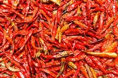 Перцы красного Chili стоковые изображения