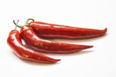 Перцы красных чилей Стоковая Фотография