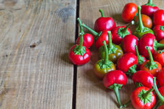 перцы чилей горячие красные Стоковые Фото