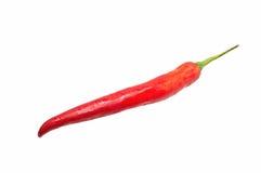 перцы чилей горячие красные Стоковое Изображение
