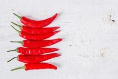 перцы чилей горячие красные Стоковое Фото