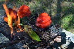 Перцы дыма пламен на гриле hibachi outdoors Стоковое Изображение RF