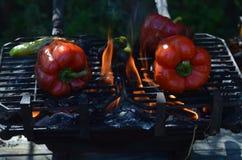Перцы дыма пламен на гриле hibachi outdoors Стоковая Фотография