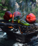 Перцы дыма пламен на гриле hibachi outdoors Стоковая Фотография RF