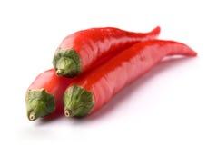 перцы chili горячие красные Стоковая Фотография RF