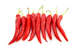 перцы chili горячие красные Стоковое Изображение