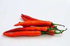 перцы chili горячие красные Стоковые Фото