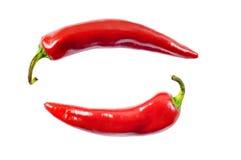 перцы chili горячие красные Стоковые Изображения RF