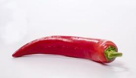 перцы chili красные стоковая фотография