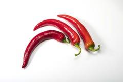 перцы chili красные Стоковое Фото