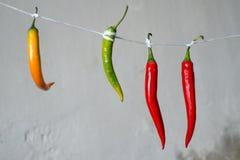 Перцы Chili на ингридиенте веревочки варя овощ Стоковые Фото