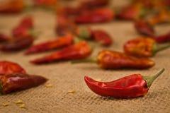 Перцы Chili Стоковые Изображения