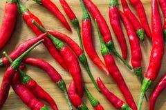 Перцы Chili Стоковое Изображение