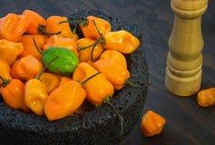 Перцы Chili Habanero стоковые изображения rf