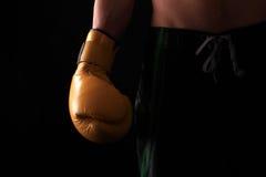 перчатка бокса Стоковые Фото
