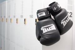 Перчатка бокса Стоковые Фотографии RF