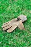 Перчатка на лужайке Стоковое Фото