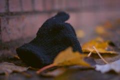 Перчатка/носка стоковые фото