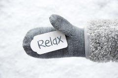 Перчатка шерстей, ярлык, белый снег, текст ослабляет стоковое изображение rf