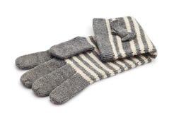 Перчатка шерстей Стоковая Фотография