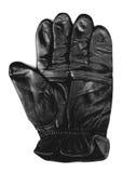 перчатка Стоковое Изображение