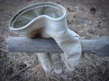 перчатка Стоковое Изображение RF