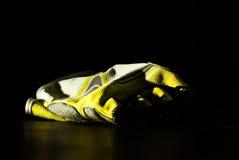 перчатка Стоковые Фотографии RF